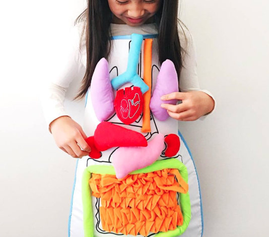 Educational Anatomy Apron