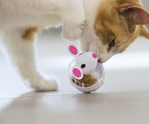Cat Treat Mouse Toy