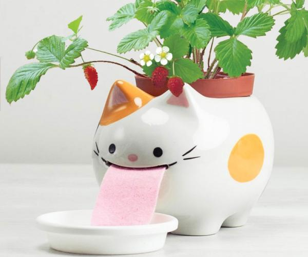 Drinking Animals Planter